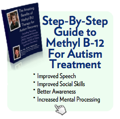Methyl-B12 for Autism Book
